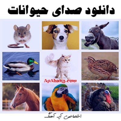 دانلود صدای حیوانات