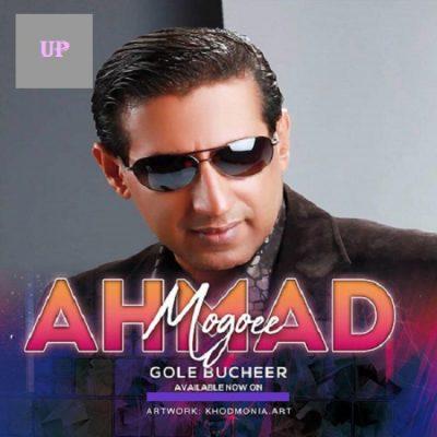 دانلود آهنگ بستکی گل بوچیر از احمد مغویی