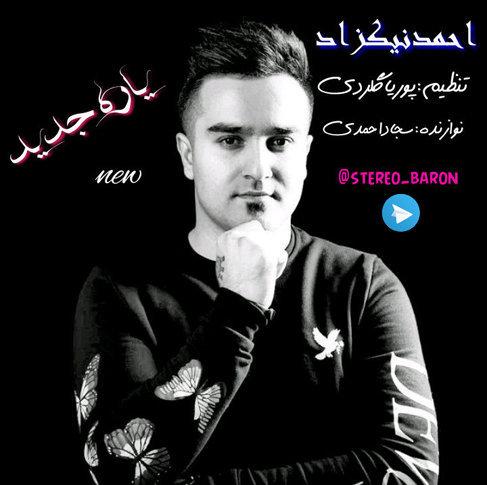 احمد نیکزاد یار جدید