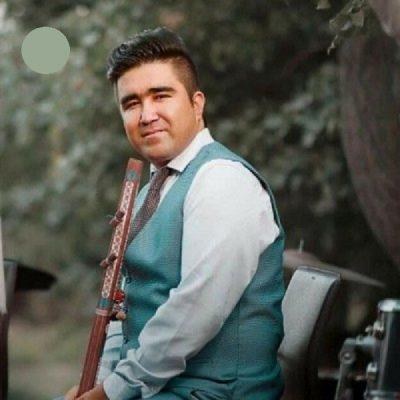 دانلود آهنگ افغانی شام چم تو از علی ضرغام