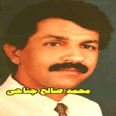 دانلود آهنگ بستکی میده از محمد صالح جناحی