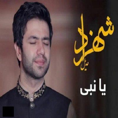 دانلود آهنگ جدید افغانی یا نبی از شهزاد عادل