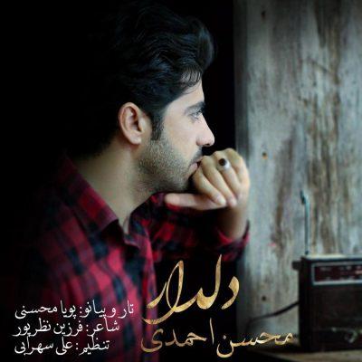 دانلود آهنگ لری دلدار از محسن احمدی
