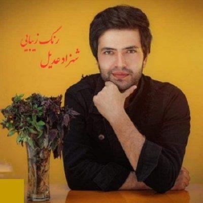 دانلود آهنگ افغانی رنگ زیبایی از شهزاد عادل