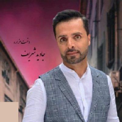 دانلود آهنگ افغانی دختر هزاره از جاوید شریف