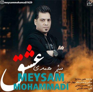 میثم محمدی عشق