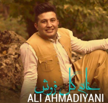 دانلود آهنگ کردی خانم گل فروش از علی احمدیانی