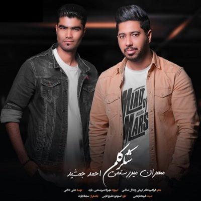 دانلود آهنگ جدید بستکی شکر کلم از احمد جمشید و مهران میررستمی