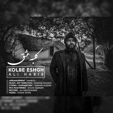 دانلود آهنگ بستکی کلبه عشق از علی حبیب